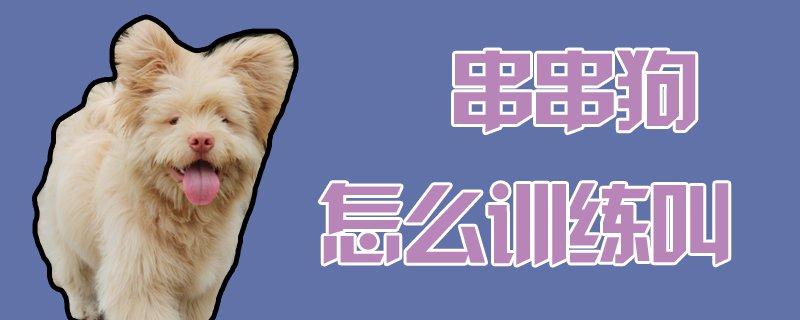 串串狗怎么训练叫